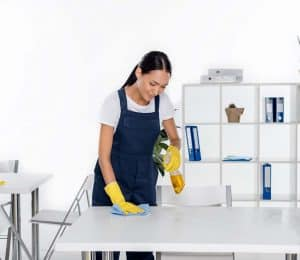 professional business cleaning services